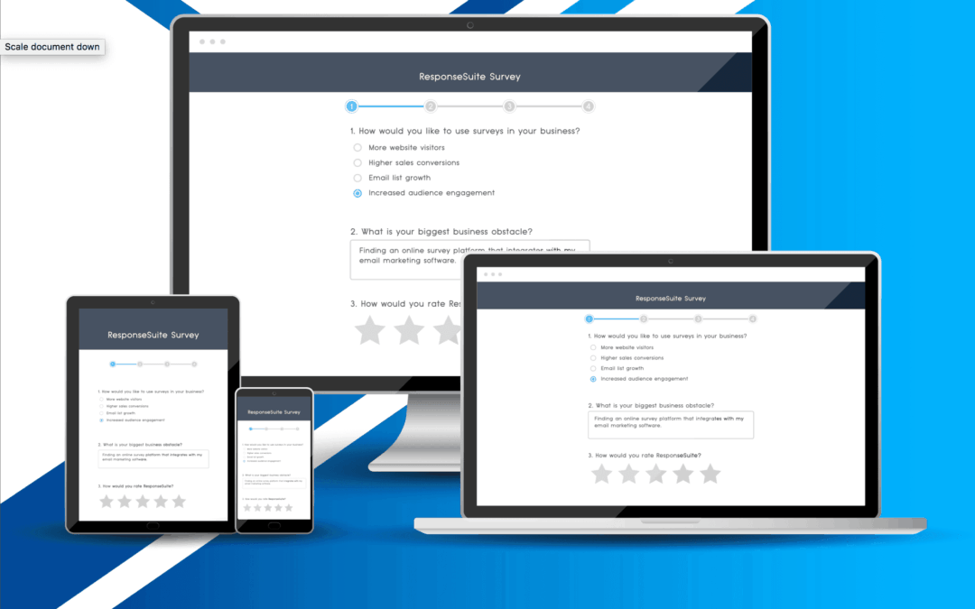 ResponseSuite, Lifetime Deal for Drag and Drop Survey Builder